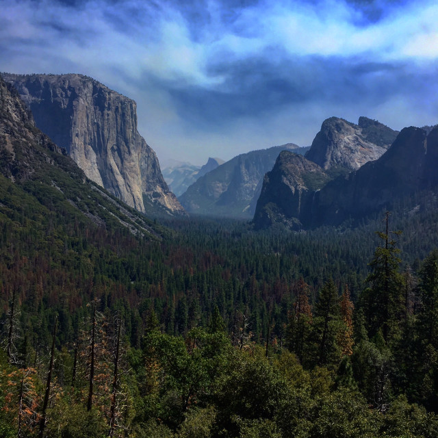 """Yosemite Valley"" stock image"