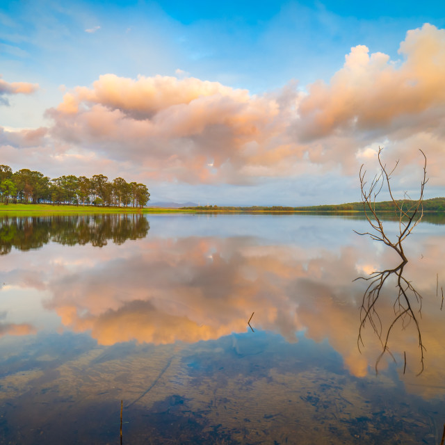 """""""Reflections on the calm lake"""" stock image"""