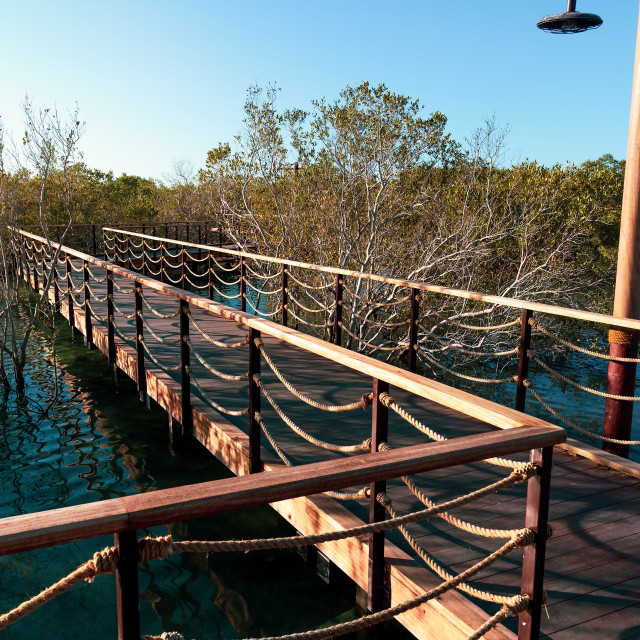 """Mangrove walk public park in Jubail island Abu Dhabi, UAE"" stock image"