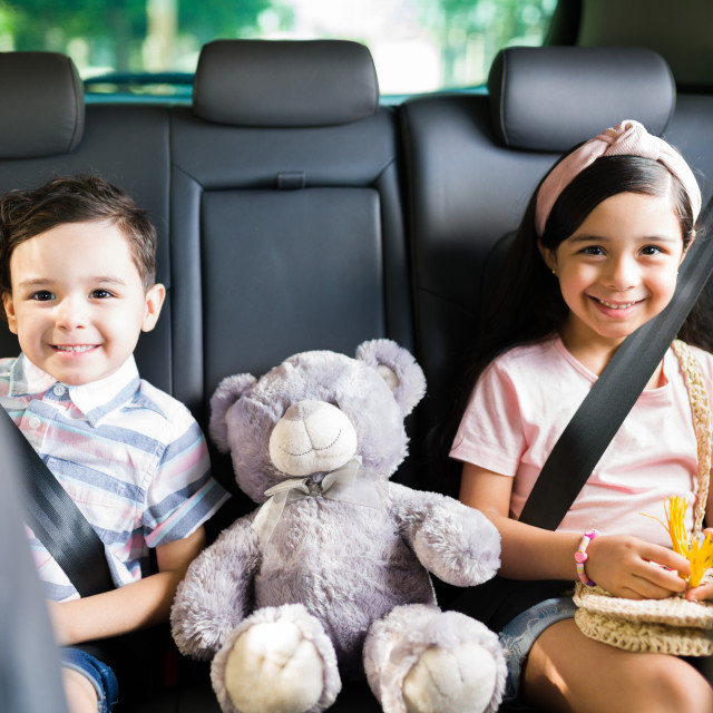 """""""Adorable brother and sister waiting in the car"""" stock image"""