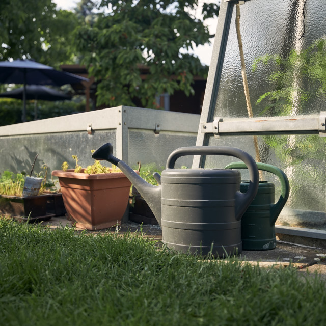 """""""Watering cans against greenhouse on home garden"""" stock image"""