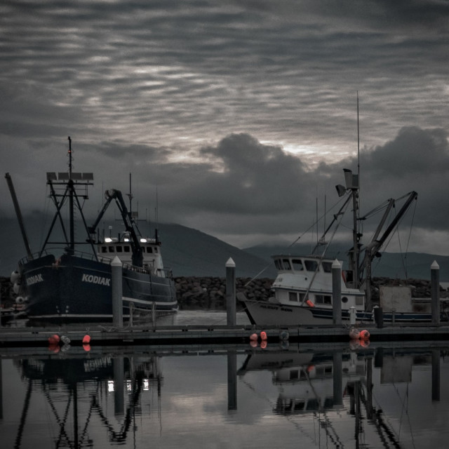 """Alaskan Morning"" stock image"