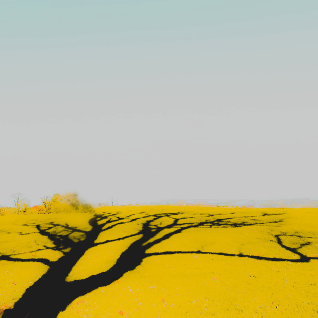 """Bleeding shadows"" stock image"