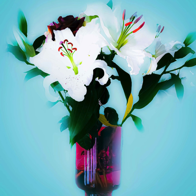 """""""White Lilies in a vase"""" stock image"""