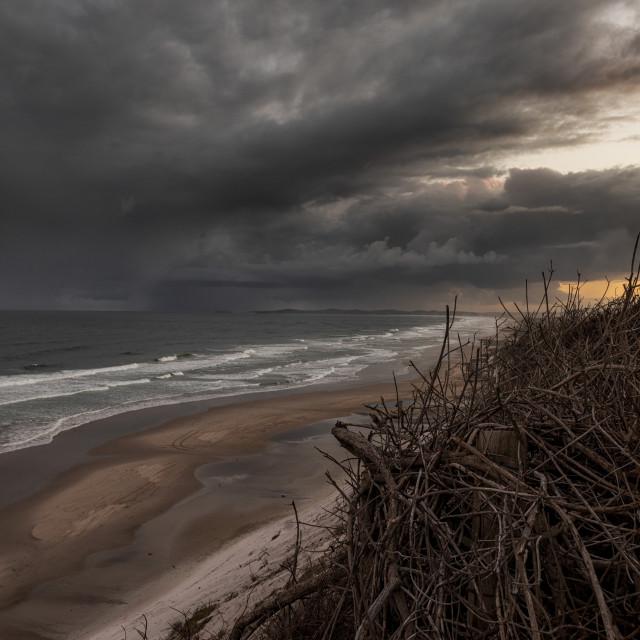 """One of my favorite beaches in Australia Broadwater Beach"" stock image"