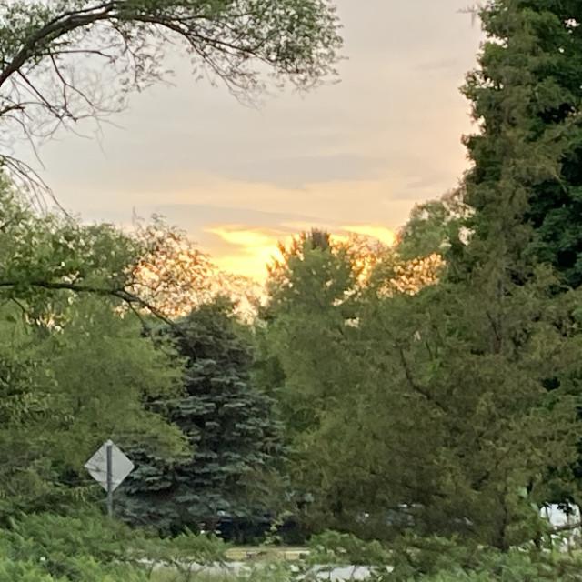 """Bright Sunset"" stock image"