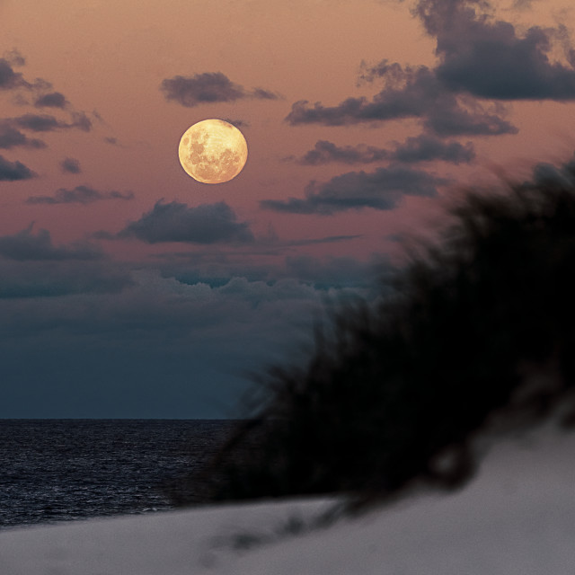 """""""Moon rise at Broadwater Beach"""" stock image"""