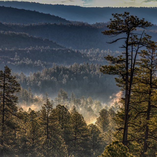 """Misty Mountains"" stock image"