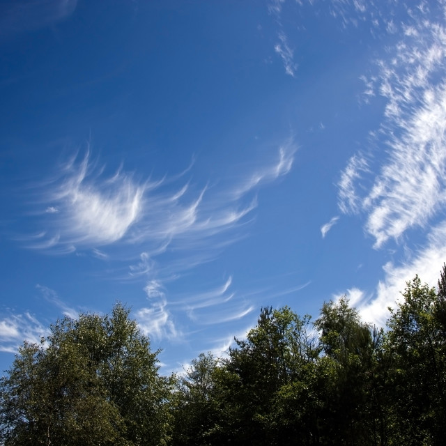 """""""Cirrus Clouds over Deeside"""" stock image"""