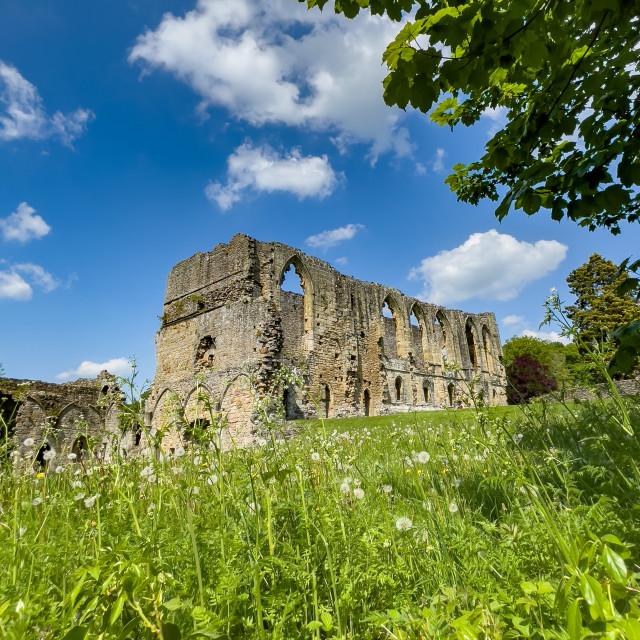 """Easby Abbey, Richmond, Historic Ruin."" stock image"