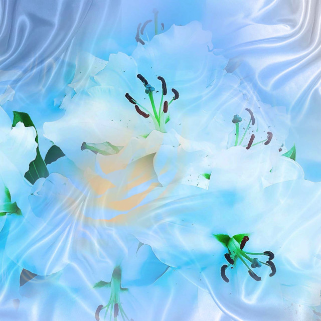 """""""Lily Flowers on silk"""" stock image"""