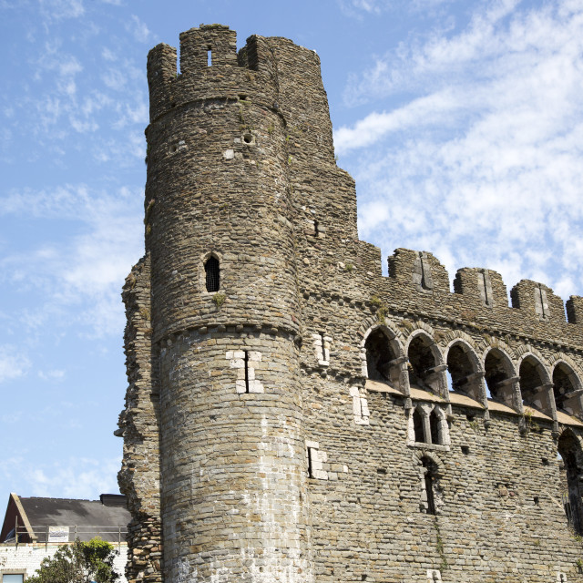 """""""Castle tower and walls, Swansea, West Glamorgan, South Wales, UK"""" stock image"""