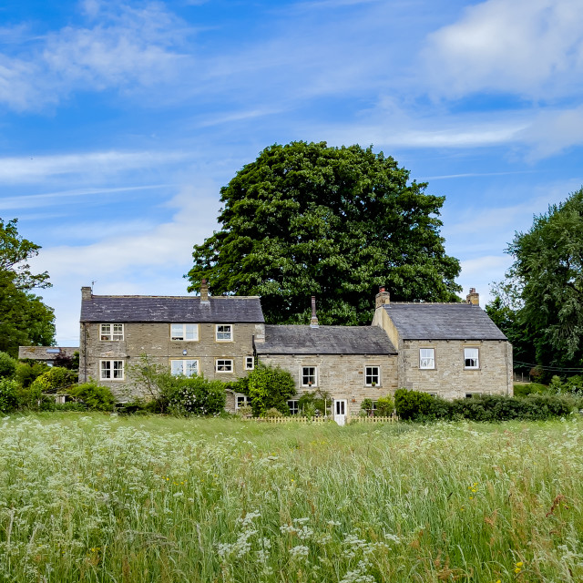 """""""Cottages, Linton in Craven. Meadow to Foreground."""" stock image"""