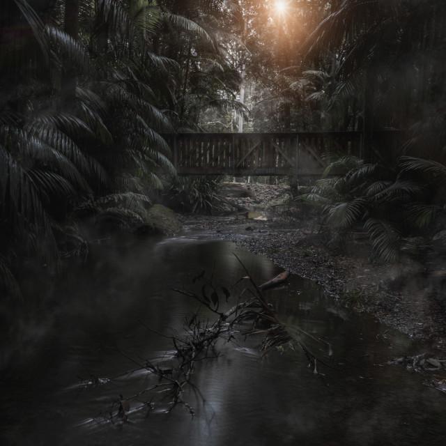 """Minyon Falls New South Wales"" stock image"