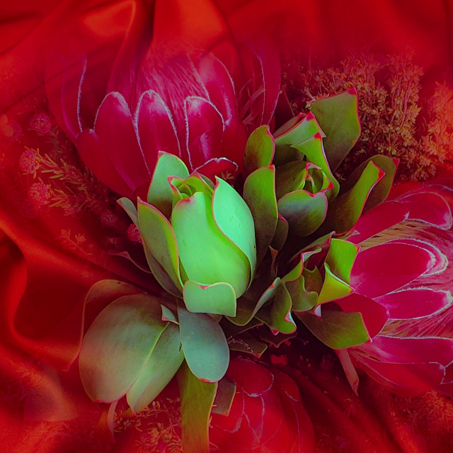 """""""Flowers on red silk"""" stock image"""