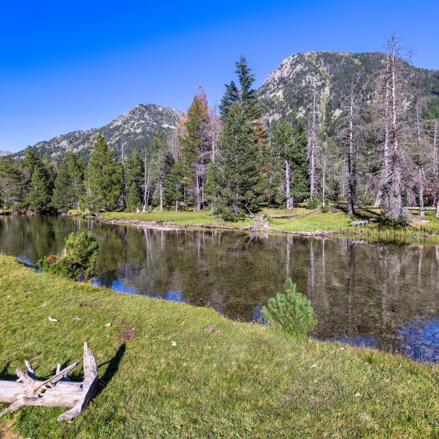 """""""Scenic view of waterfall and lake in a Spanish Pyrenees Mountain in a sunny day. Transparent clear water.Aiguestortes i Estany of Saint Maurici National Park"""" stock image"""