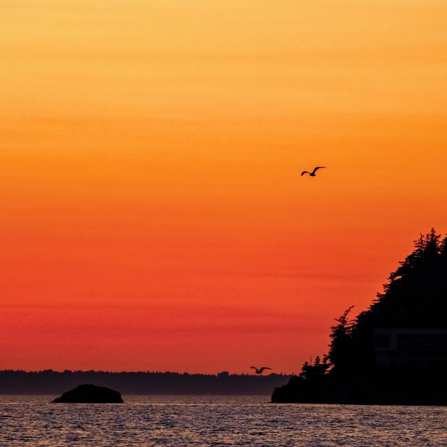 """""""Salish sunset"""" stock image"""