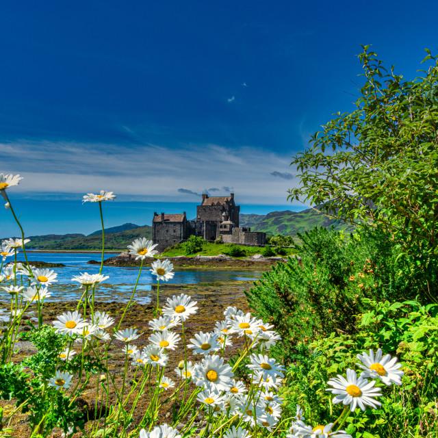 """""""Eilan Donan Castle, Scotland"""" stock image"""