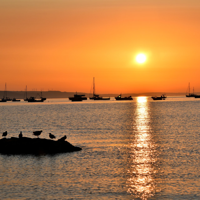"""Tenby at sunrise"" stock image"