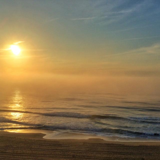 """""""Morning ocean fog"""" stock image"""