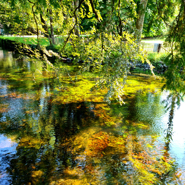 """""""Cong River"""" stock image"""