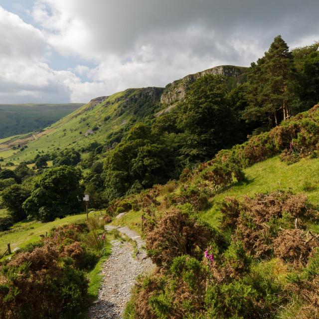 """Berwyn Mountains path"" stock image"