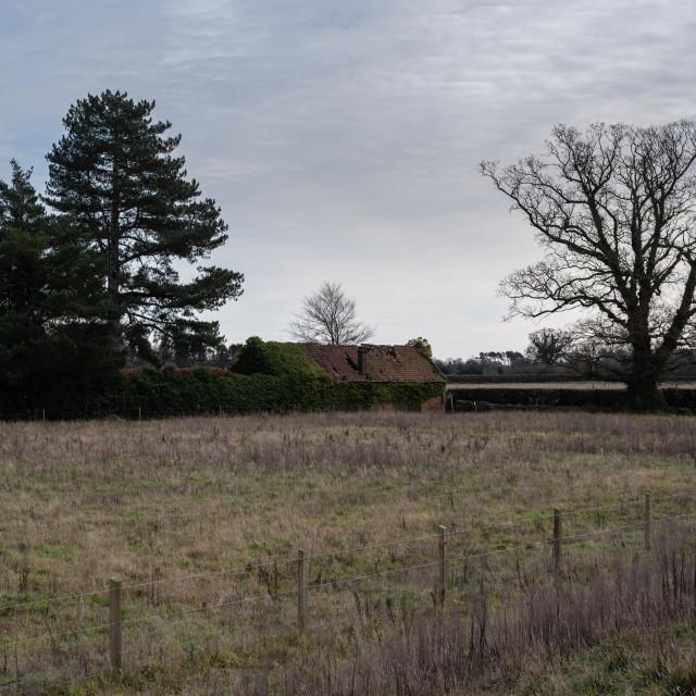 """Derelict brick barn, Low Road, Great Plumstead, Norwich, Norfolk"" stock image"