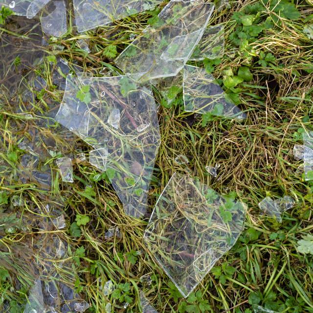 """Broken ice shards on grass"" stock image"