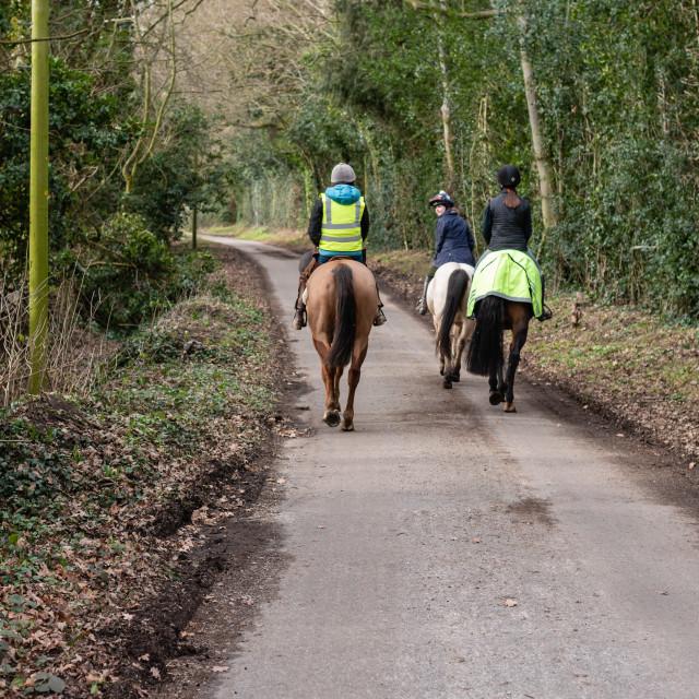 """Horseriders on country lane hack, walking away, Norfolk, Uk - i"" stock image"