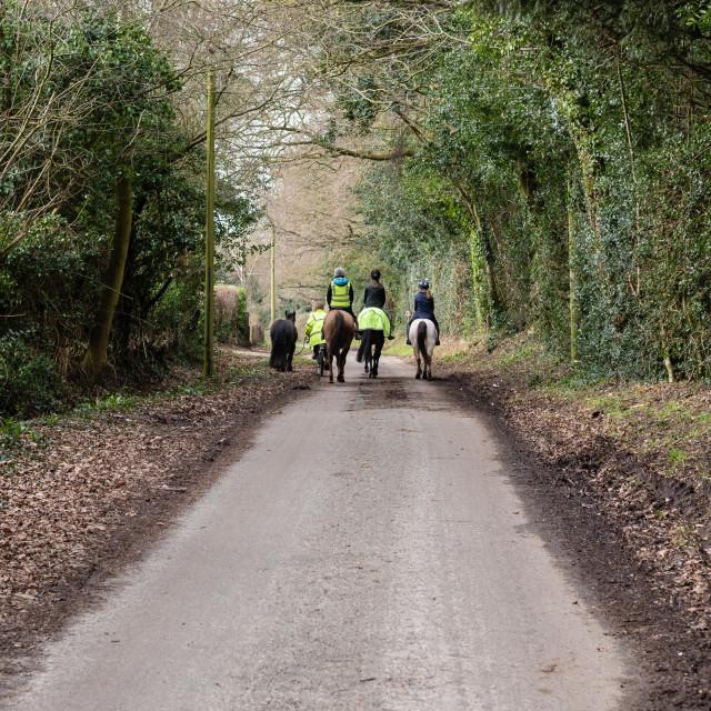 """""""Horseriders on country lane hack, walking away, Norfolk, Uk - ii"""" stock image"""
