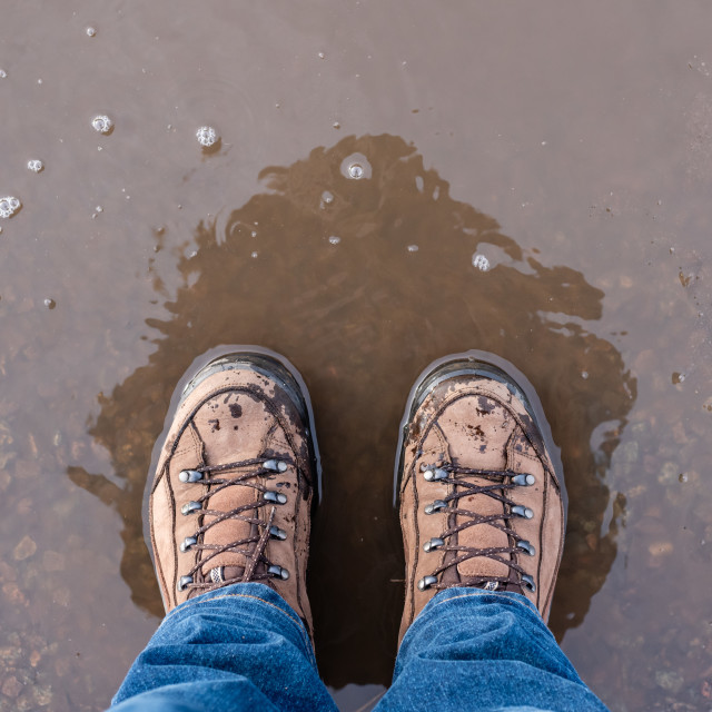 """""""Overhead shot of feet wearing leather walking boots, standing in"""" stock image"""