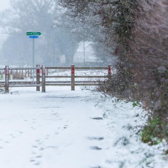 """""""Footprints in snow covered path by Broadland Expressway NDR, Pos"""" stock image"""