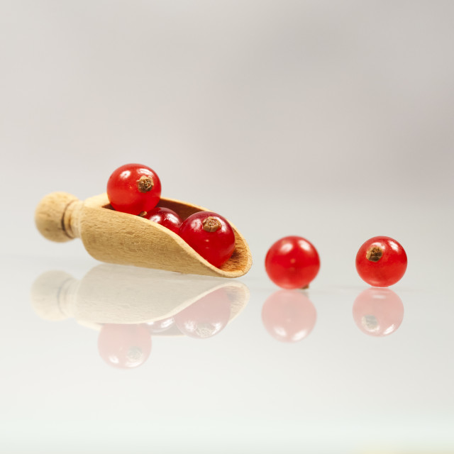 """""""Red currants with white background"""" stock image"""