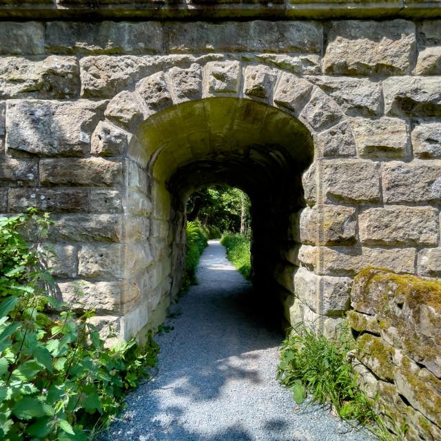 """Crenelated Nidd Aquaduct, Tunnel at River Wharfe near Barden Bridge"" stock image"
