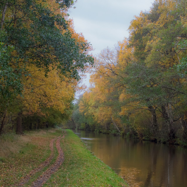 """""""Autumn On The Canals"""" stock image"""