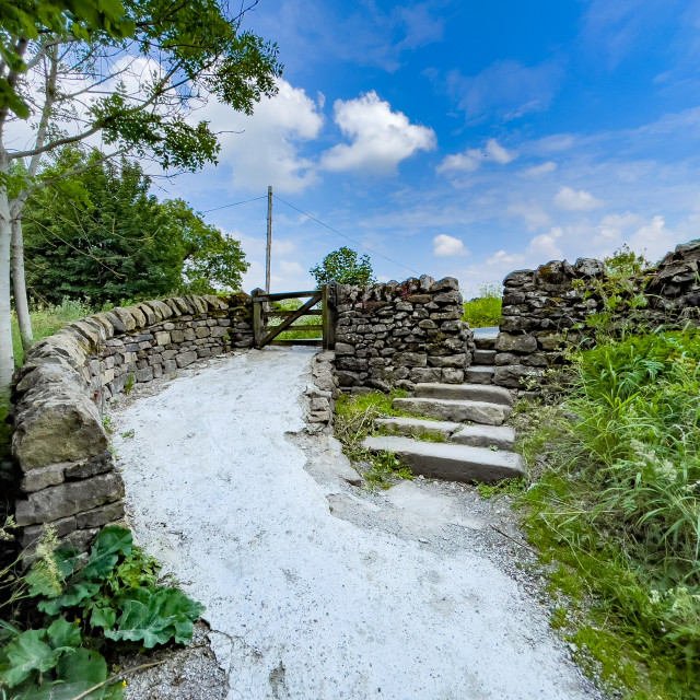 """""""Exit via Stone Steps Leading to Barden Bridge from Footpath Alongside the River Wharfe, Yorkshire Dales."""" stock image"""