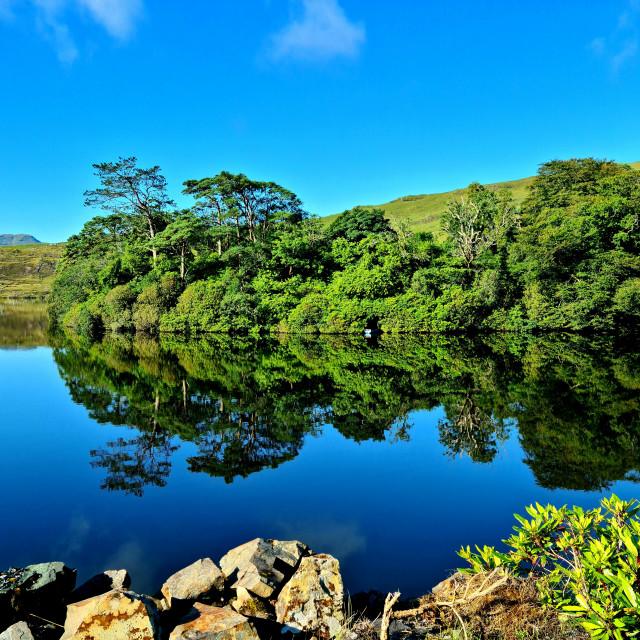 """Lough Fee 'Savage Beauty'"" stock image"