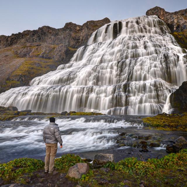 """""""Magnificent Dynjandi Waterfall"""" stock image"""