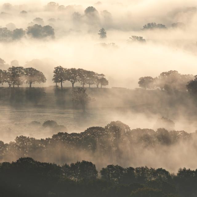 """Fog near Welland"" stock image"