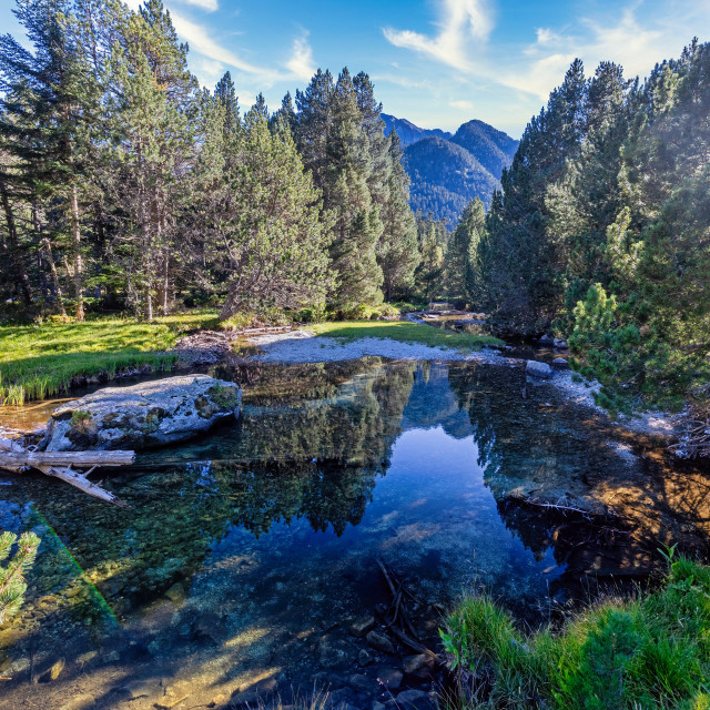"""""""The beautiful Aiguestortes i Estany de Sant Maurici National Park of the Spanish Pyrenees mountain in Catalonia, beautiful mountain creek"""" stock image"""