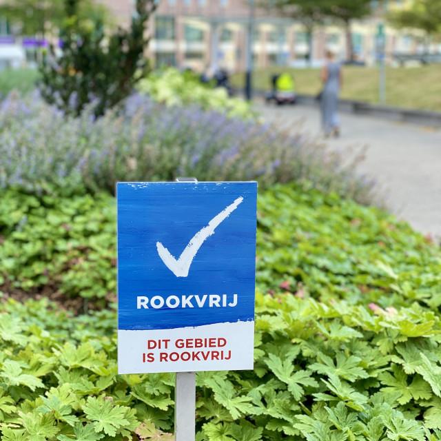 """""""Hospital smoke-free zone sign."""" stock image"""