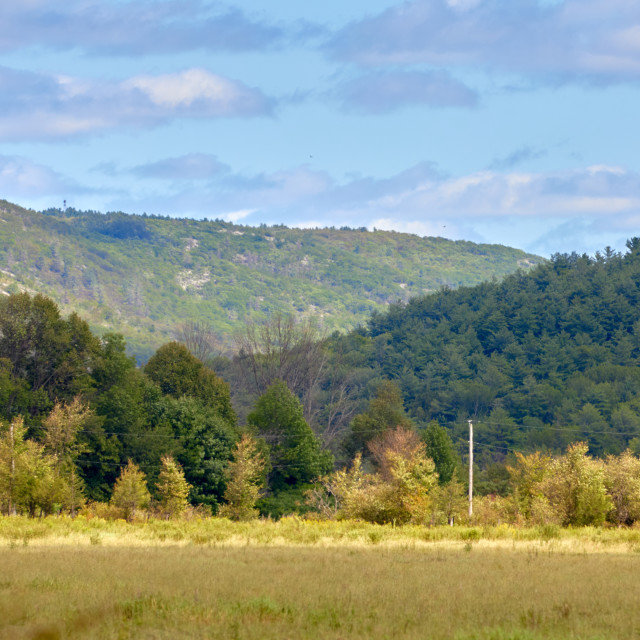 """""""Hills of Gatineau Park in summer"""" stock image"""