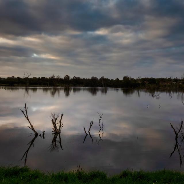 """Wetland Lake Reflecting Clouds"" stock image"