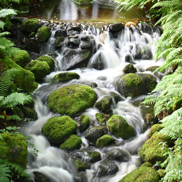 """After the rain - a Scottish Glen"" stock image"