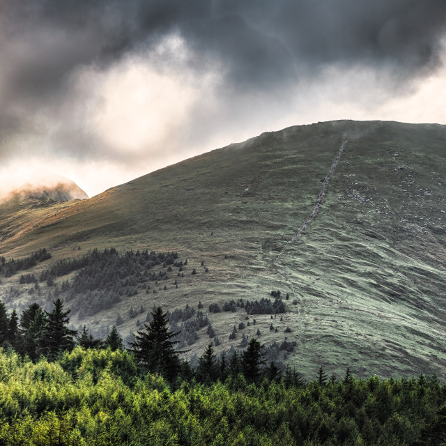 """""""Rhyd-Ddu Path, Snowdonian, north Wales."""" stock image"""