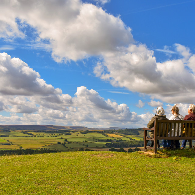 """""""View from Leyburn"""" stock image"""