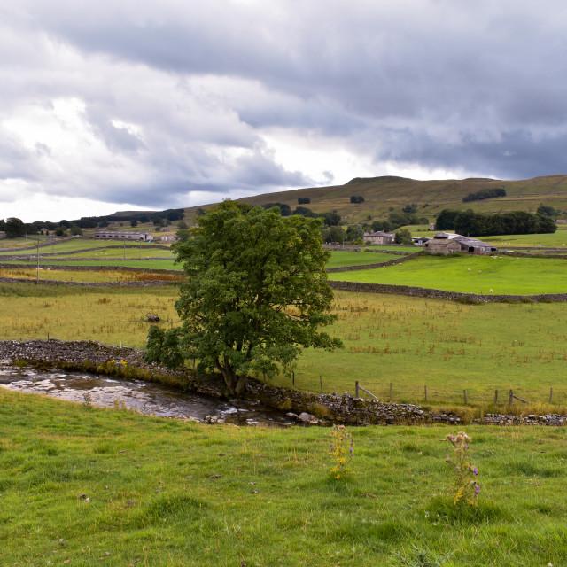 """Yorkshire Dales Landscape"" stock image"