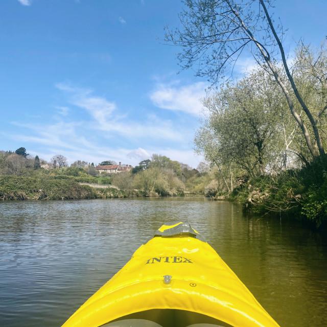 """River life"" stock image"