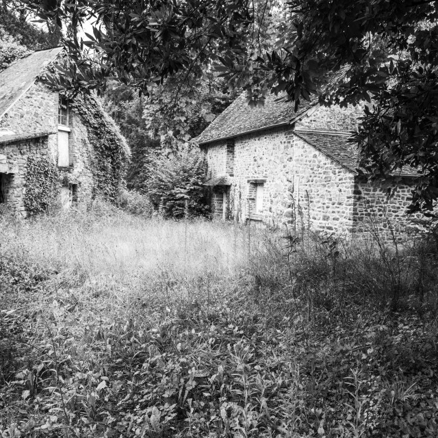 """""""Abandonned country house, France"""" stock image"""