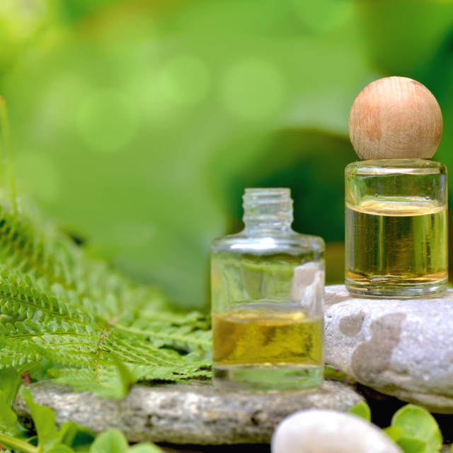 """""""essential oil bottles on stone in fern foliage"""" stock image"""